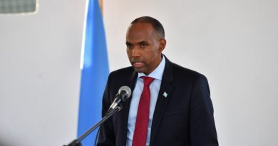 Somalia promises to secure Turkish nationals' safety