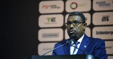 Somalia agrees offshore oil exploration roadmap with Shell/Exxon -minister