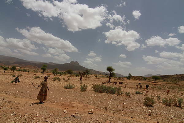 Somalia is one of the most vulnerable countries in the world to climate change